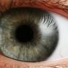 Laser Eye Surgery Primer: Lasik vs PRK
